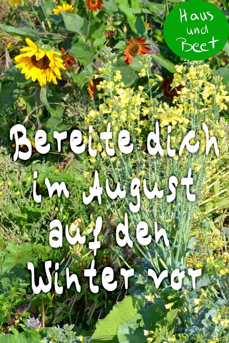 Garten im August – sorge für einen entspannten Winter