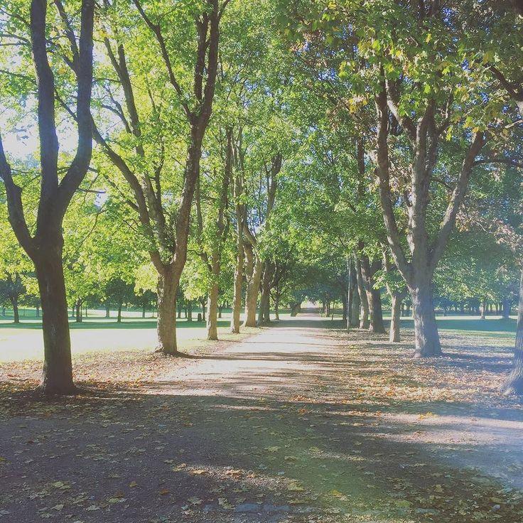 Beautiful Frognerparken with a taste of fall. #frognerparken #visitoslo #wheretovisitinoslo #iloveoslo #locationsinoslo