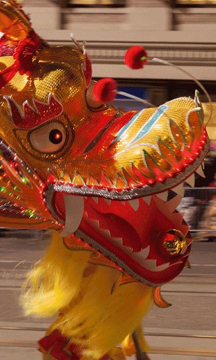 Capodanno cinese, arriva l'anno della Capra #goatyear2015
