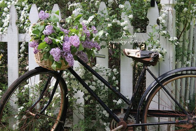 a vintage bike carrying freshly cut flowers is a dreamy way to greet your visitors! By French Country Cottage: Bicycles, Cottages Gardens, French Country Cottages, Cottage Gardens, Bouquets, Gardens Planters, Old Bike, Gardens Parties, Lilacs