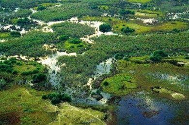 Okavango Delta, Namibia.