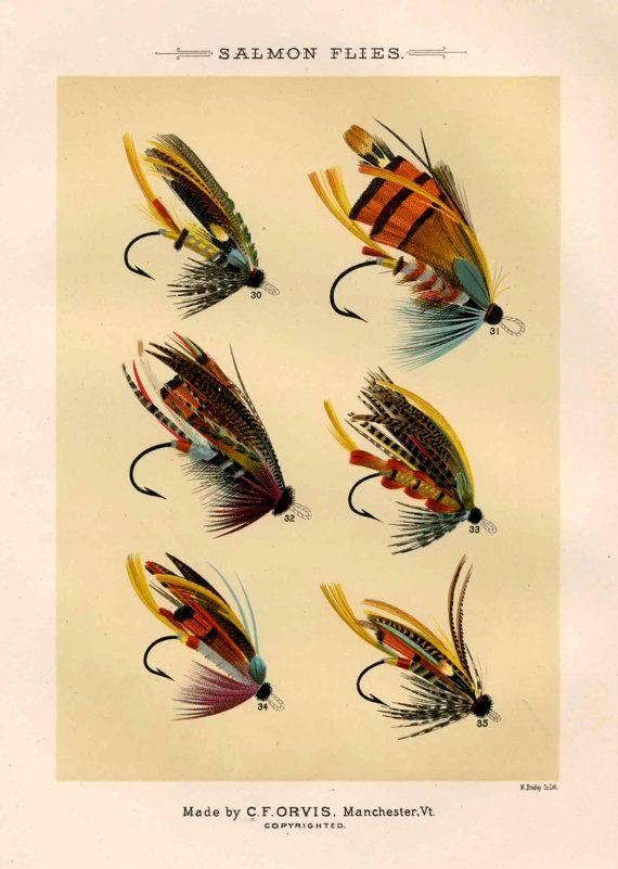 salmon flies glorious fly fishing print no 1 by EPHEMERApress, $12.50