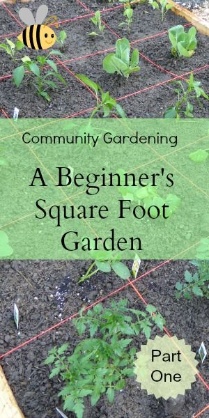Community Gardening - A Beginner's Square Foot Garden - Part One