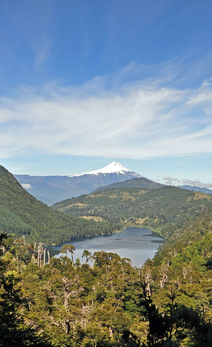 One year ago it was quiet and we climbed it - now it's erupting! Villarrica volcano seen from Huerquehue NP in Pucon, Chile