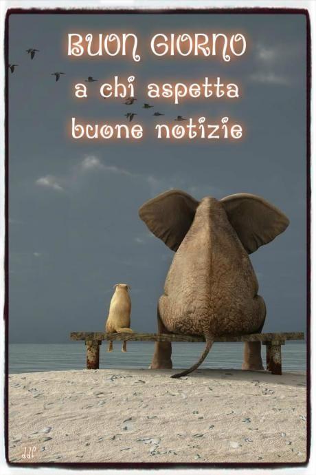 Pagina PiZap di Diana Ddf De Franceschi
