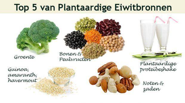 Waar haal eiwitten uit als je geen of weinig vlees eet? - Plantaardige Eiwitten