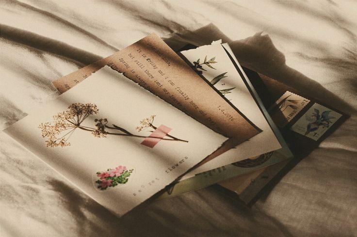 aesthetic brown letter cream letters beige journal quotes ausgewechselt pastel kpop sehun hoe flowers writing eye smokey sagittarius aquarius eyeshadow