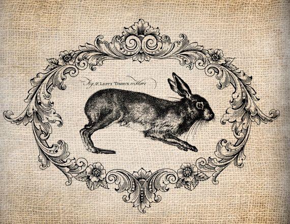 Antiquariato francese coniglio Le Lapin Script di AntiqueGraphique