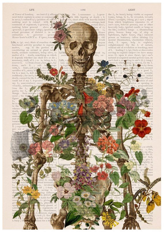 Skeleton covered with flowers, Anatomy art, Wall decor, Wll art, medical student gift, Poster art, SKA146PA3