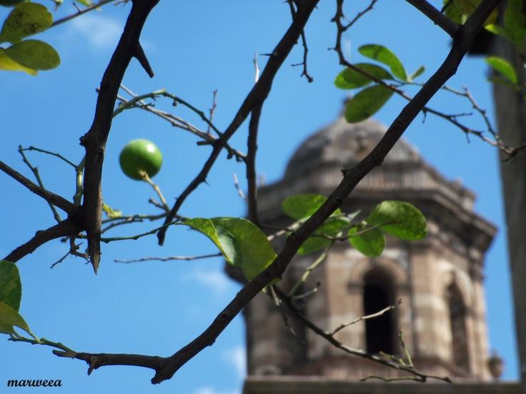 Limones Tapatíos @ Guadalajara [101115]