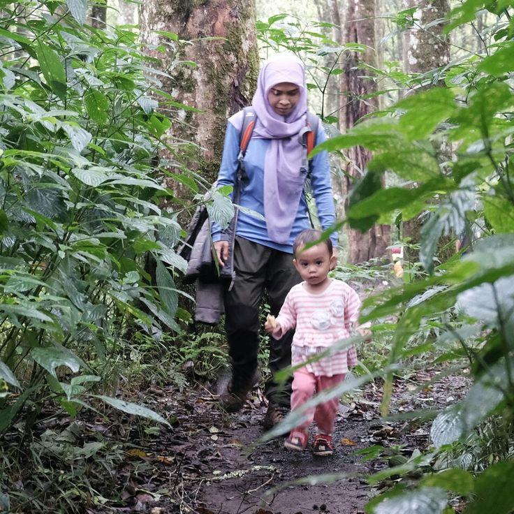 Menyiapkan rencana baru untuk kembali memulai penjelajahan bagi Amira... Berhenti meratap, kita mulai aksi yang penuh arti... Foto @noerhoeda  #tropicalwilderness #wilderness #adventure #familyadventure #IndonesiaMountainSpecialist #getoutside #gooutside #jungle #mountain #fotonesia #mybest_inspirator