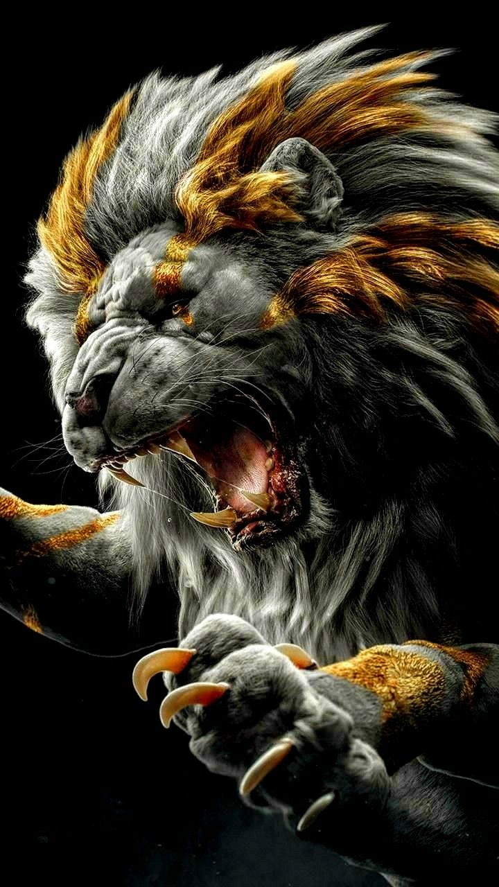 Lion Wallpaper Hd In 2020 Gorilla Wallpaper Lion Wallpaper Lion Art
