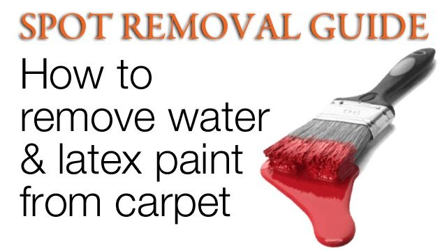 How Do You Get Water Based Paint Out Of Carpet