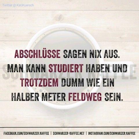 STUDIERT