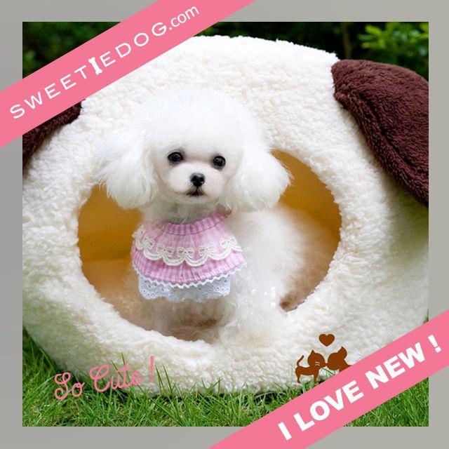 Panier chien - Dôme chien - Doggy - www.sweetiedog.com