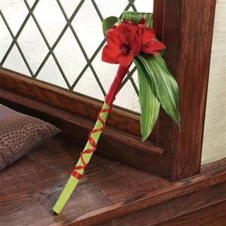 Red Amaryllis Bridesmaid Bouquet
