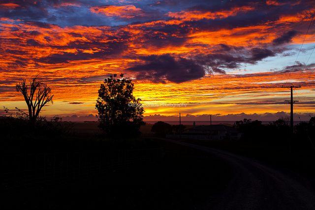 Glenburn Station sunrise | © Elyse Childs Photography