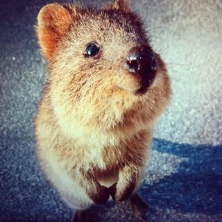 """You keep doing you."" 