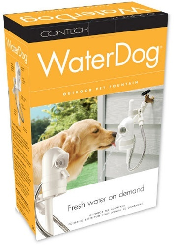 WaterDog Automatic Outdoor Drinking Fountain