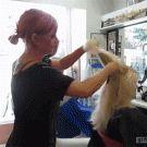 Razor hair-cutting technique