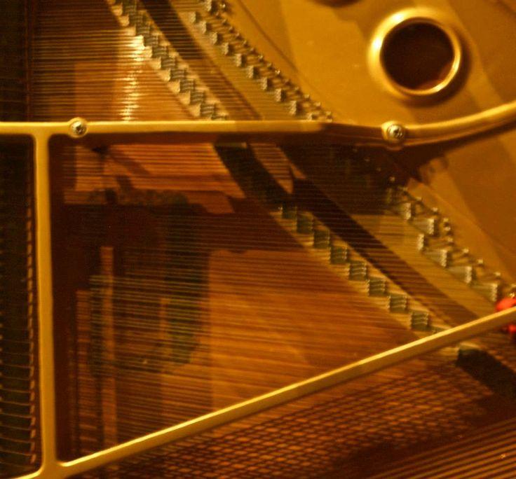 LA CLASSICA IN BOTTEGA 3 appuntamenti di musica classica  30 giugno 2013 - 21:30 Laura Savigni (pianoforte)  9 luglio 2013 - 21:30 Trio Poulenc - Francesca Rodomonti (oboe) Simone Novellino (fagotto) Cecilia Casarini (pianoforte)  14 luglio 2013 - 21:30 Charlie 'n' Bass www.quintaparete.org