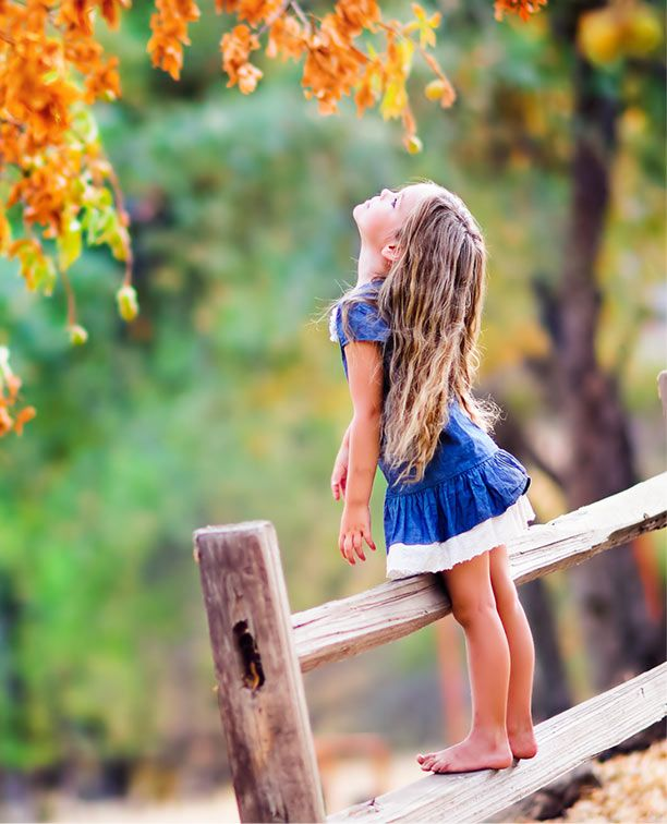 Standing on a fence to reach the autumn leaves on a day that turned warm in autumn