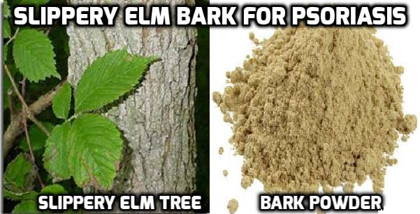 how to get rid of elm scale