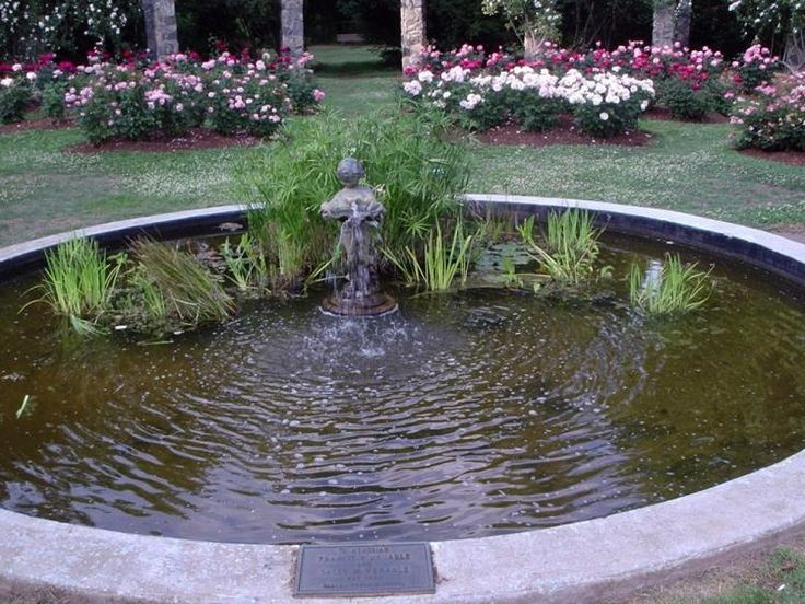 Water Garden Theater Great For The Musical Gardens The Gardens Close And Are Evacuated At Pm On