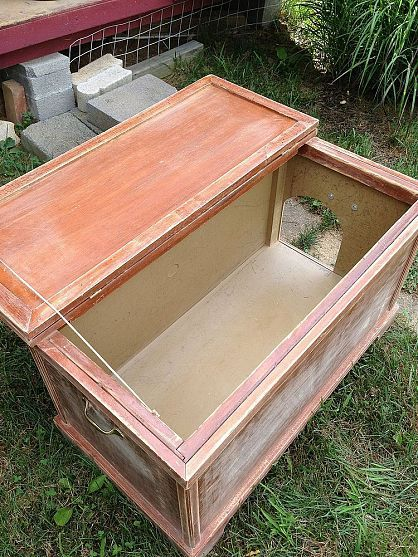 Raised Beds Used As Cat Litter Boxes