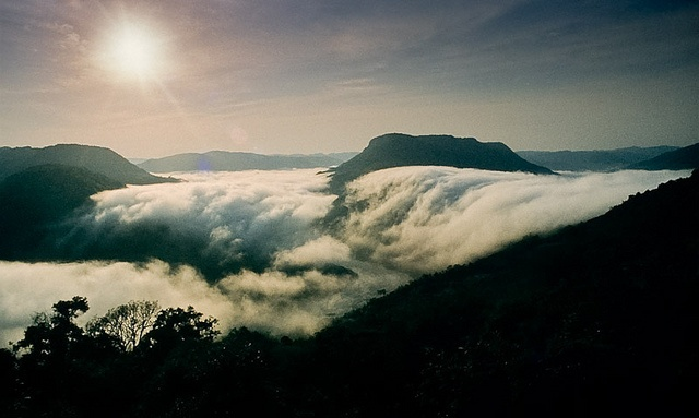 fog, cotiporã