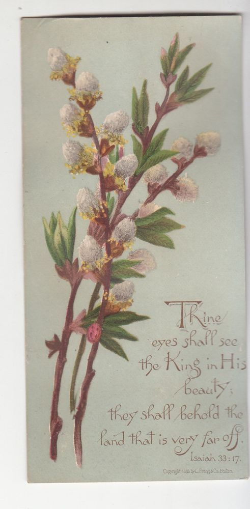 Thine Eyes Shall See King Pussy Willow L Prang Religious Victorian Card c1880s