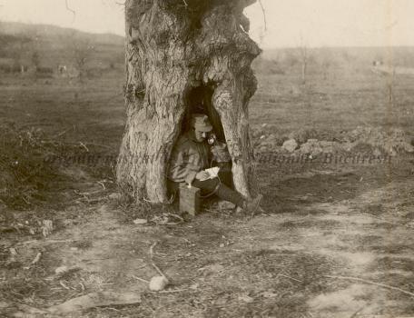 BU-F-01073-1-08755 Post telefonic într-o scorbură de copac. Verdea, 1917.11.13 (niv.Document)