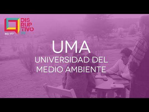 Disruptivo 177 - Universidad del Medio Ambiente