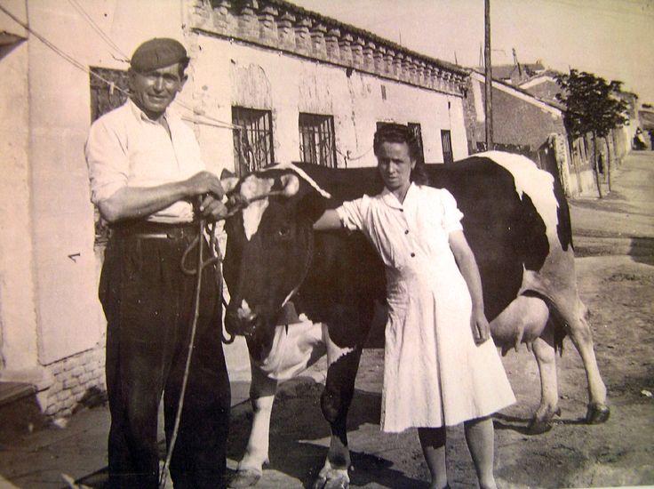 Vaquería, calle Emilia 26 (Ventilla, 1944). Foto: Julián Blasco - Portal Fuenterrebollo