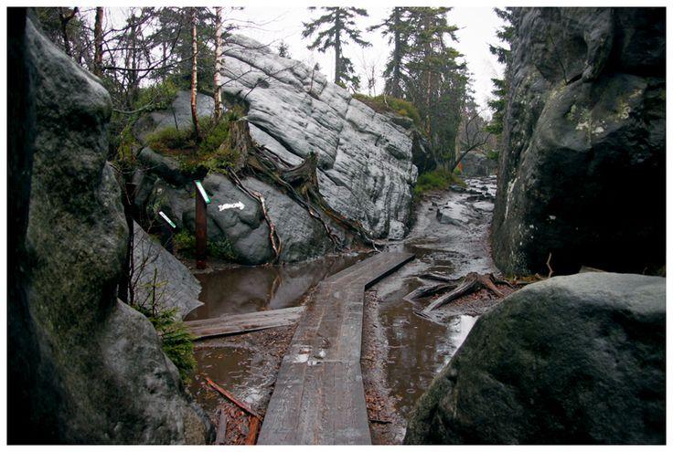 Na wysokości 919 m n.p.m. znajduje się labirynt skalny - wspaniałe formy powstały w wyniku erozji.