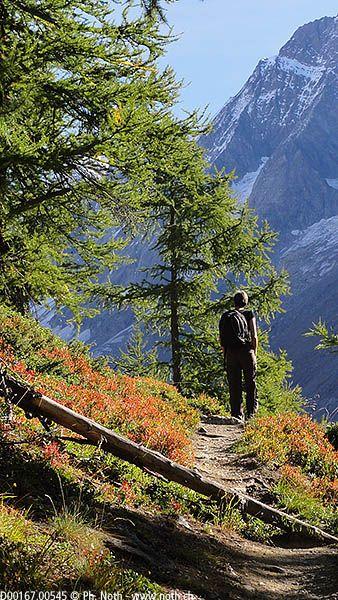 Randonnées pour grizzlys | Valais | Anenhütte, Anusee (Anensee)