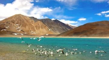 Tourist hotspot Ladakh's Pangong lake on threat to extinction Read complete story click here http://www.thehansindia.com/posts/index/2015-08-21/Tourist-hotspot-Ladakhs-Pangong-lake-on-threat-to-extinction-171635