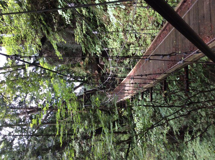 田立の滝 始めての吊り橋