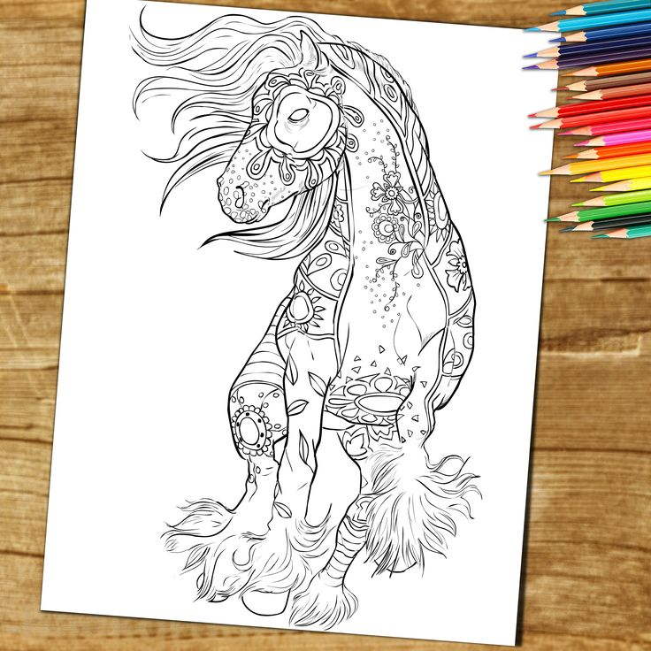 A Zentangle Coloring Page From The Adult Colouring Book Amazing World Of Horses