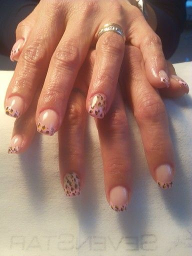 Francesa Rosa - Leopardo