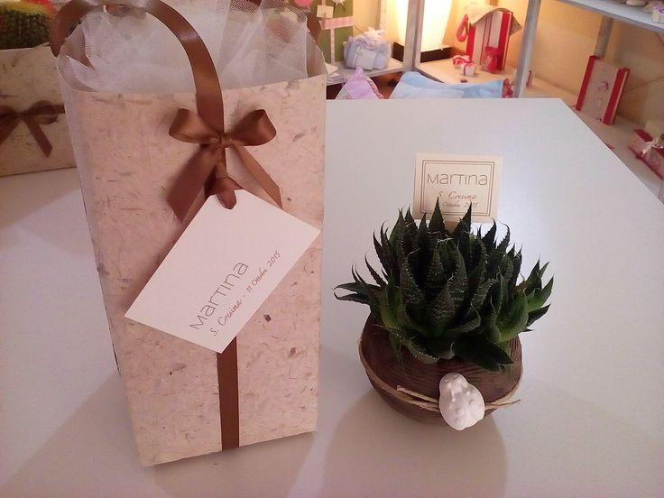 Piantina grassa con vasetto in terra argilla modellato a mano e confezione in carta naturale.