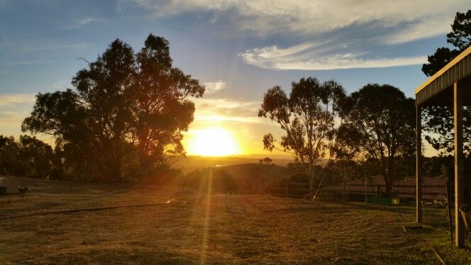 #sunset at Annie's Cedar Farm Cottages