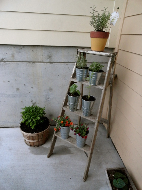 17 Best Images About Patio Herb Garden On Pinterest Herb Pots Patio Herb Gardens And Spinning