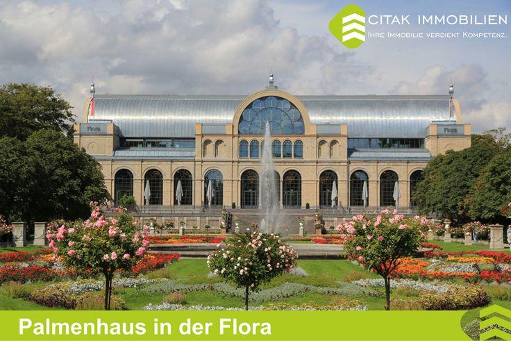 Köln-Riehl-Palmenhaus in der Flora