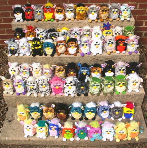Furby (many of)