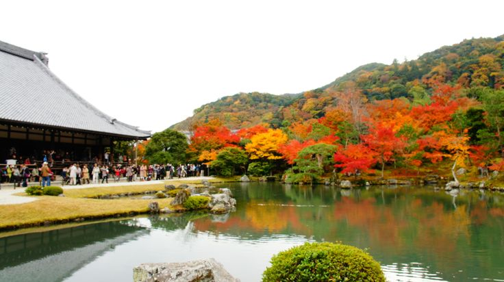 天龍寺 Tenryu-ji Temple in 京都市右京区, 京都府