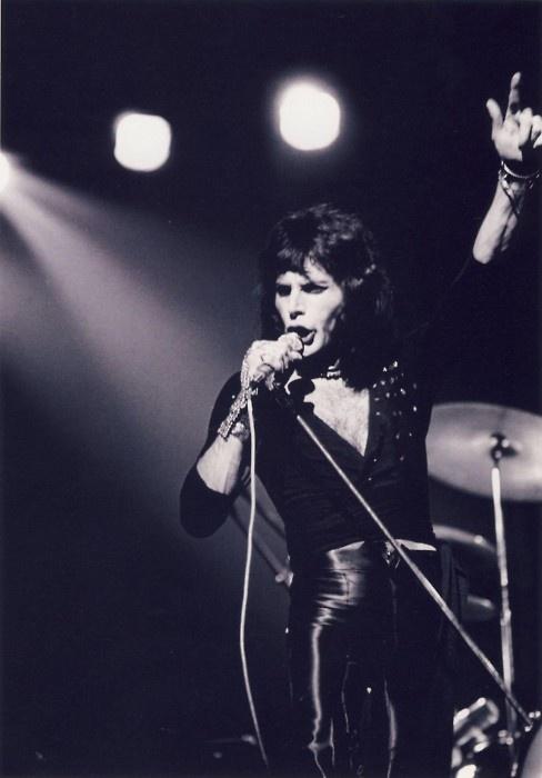 Freddie Mercury from Queen