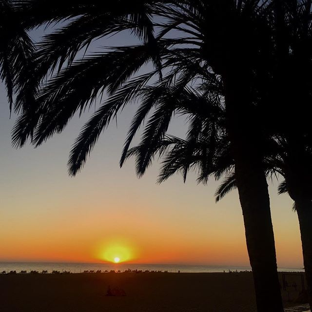 Beach recommendation #22: Sunset in Morro Jable - tomorrow is another day  #morrojable #fuerteventura #spain #españa #sunset #sonnenuntergang #picoftheday #stunning #beach #relax #tonicbikini #pictureoftheday #stunning #strand #sun #holiday #palms