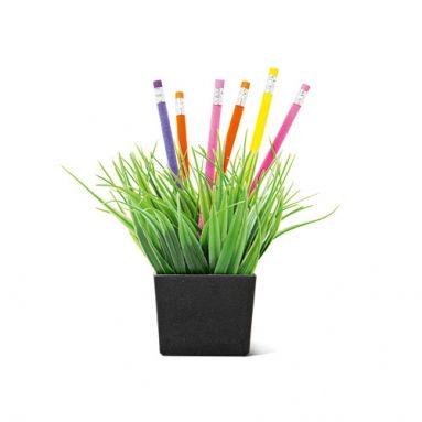 Sæt blyanter og kuglepenne på græs når du ikke bruger dem. Penneholderen koster 30 kroner og er garanteret pollenfri.