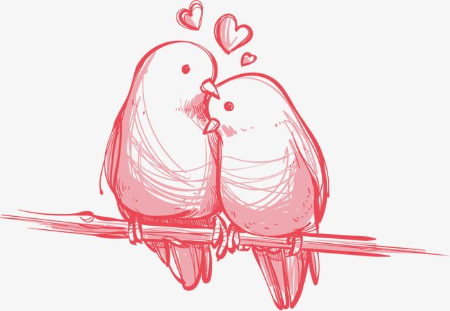 Vector Love Birds Hand Painted Bird Clipart Vector Hand Painted Png Transparent Clipart Image And Psd File For Free Download Love Birds Love Birds Wedding Hand Painted
